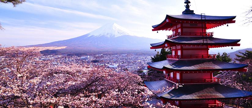 Tips Keren Buat Kamu yang Mau Liburan ke Jepang Dengan Budget Minim