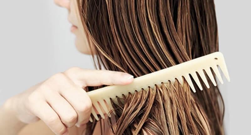 Image result for jangan menyikat rambut basah
