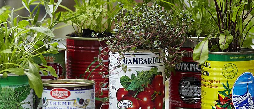blog_diy_-8-inspirasi-pot-tanaman-dari-barang-bekas