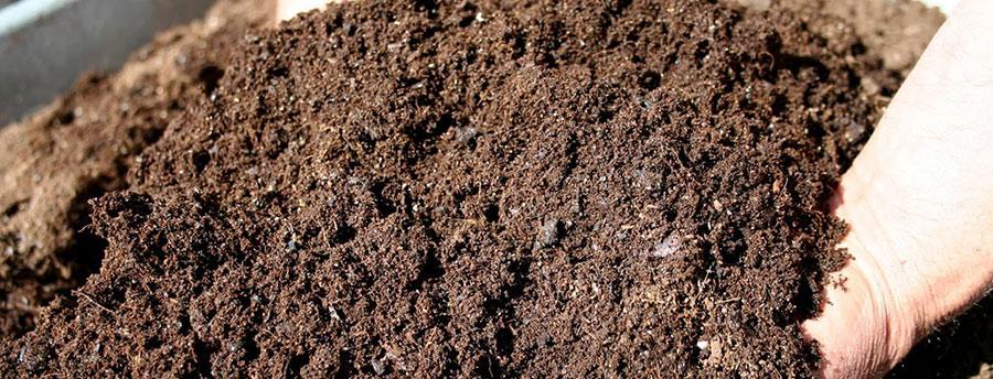 Cara Membuat Kompos Pupuk Organik Untuk Rawat Taman Dan Kebunmu Tokopedia Blog