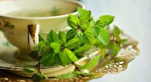 9 Obat Asam Urat dari Bahan Alami