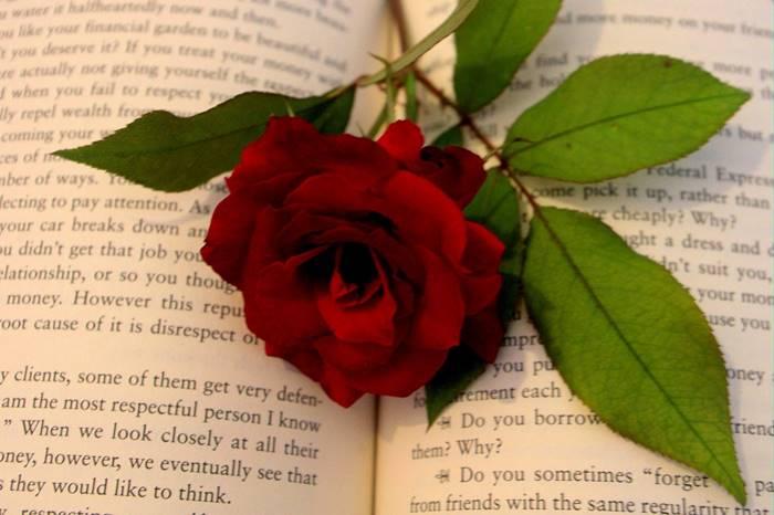 hadiah valentine romantis
