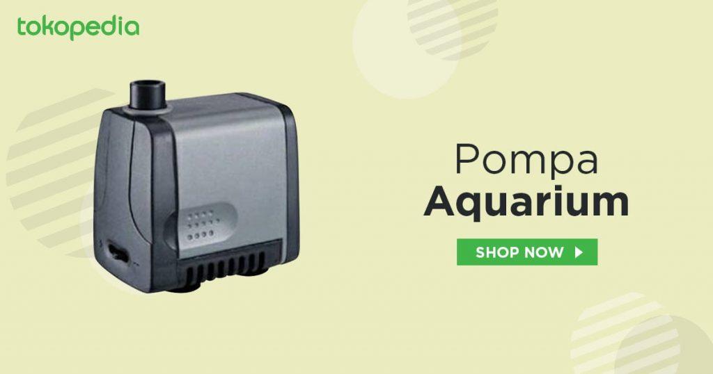 Pompa Akuarium