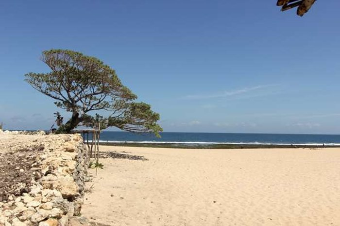 18 Tujuan Wisata Pantai Di Yogyakarta Terpopuler Tokopedia Blog