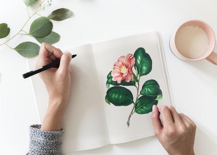 7 Cara Menggambar Pohon Dengan Pensil Tokopedia Blog