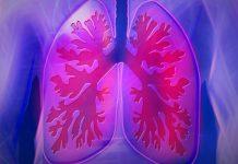 cara membersihkan paru paru secara alami