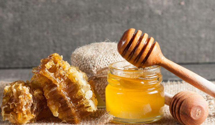 macam / jenis madu asli