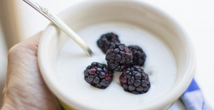 merk yogurt terbaik