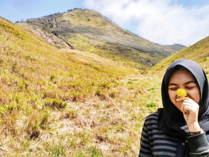 Savana Gunung Merbabu