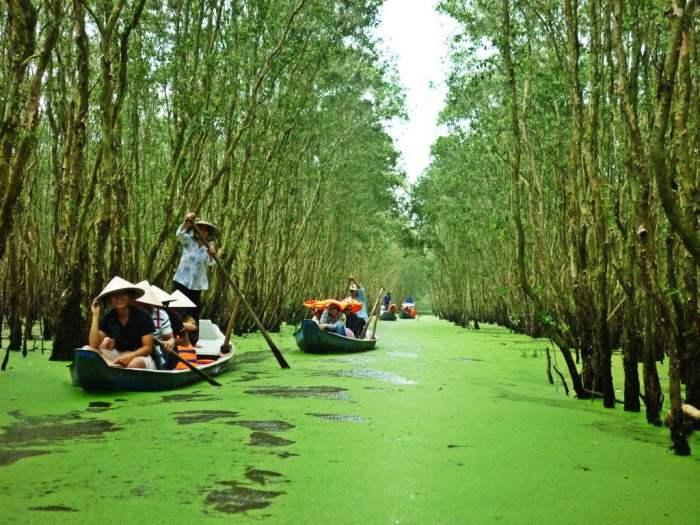 Hutan Xeo Quyt - Objek Wisata Vietnam