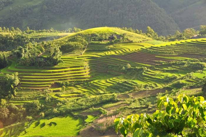 Sapa Terraces - Objek Wisata di Vietnam