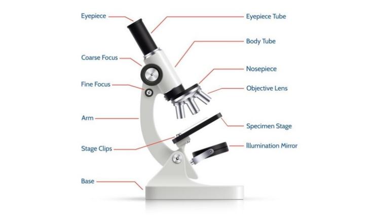 15 Cara Menggunakan Mikroskop Dan Bagiannya Tokopedia Blog