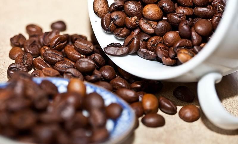 perbedaan kopi robusta dan arabika, perbedaan kopi arabika dan robusta