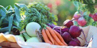 resep / cara membuat asinan sayur