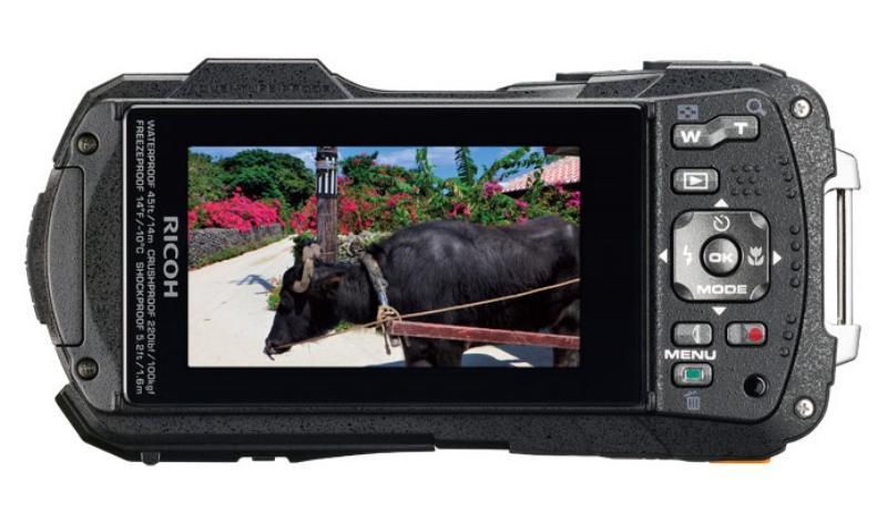 review ricoh wg 50, review ricoh underwater camera, kelebihan ricoh wg 50, kekurangan ricoh wg 50