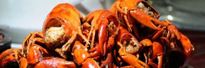 Mencicipi Lezatnya 5 Kuliner Khas Sorong yang Khas!