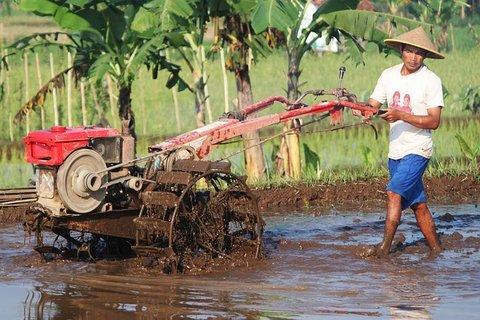 petani bisa menjaminkan bajak untuk pinjaman modal