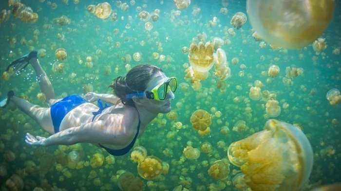 Wisata Pulau Derawan, Surga Tersembunyi di Kalimantan Timur