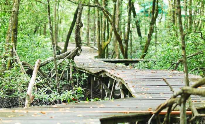9 Rekomendasi Destinasi Wisata Tarakan Favorit