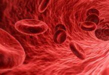 obat penambah darah yang bagus, suplemen penambah darah terbaik, vitamin penambah darah paling bagus untuk anemia