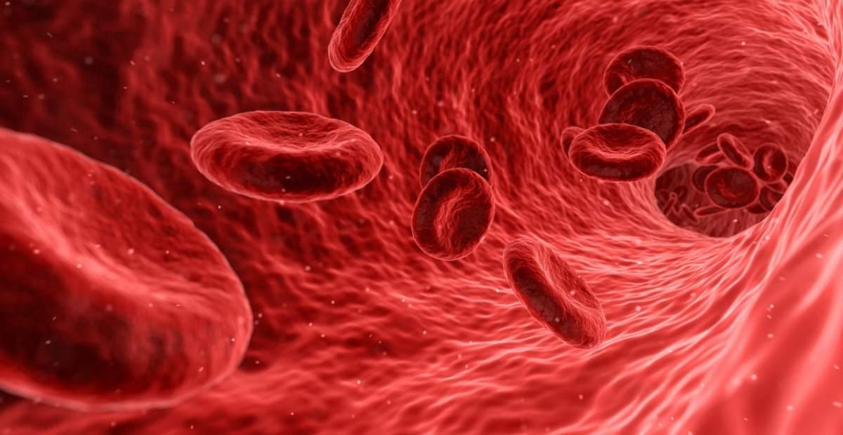 10 Obat Vitamin Penambah Darah Yang Bagus Untuk Anemia
