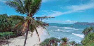 Destinasi wisata pantai di pacitan