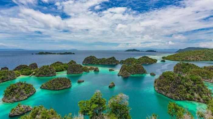 Destinasi lokasi diving terbaik di Indonesia
