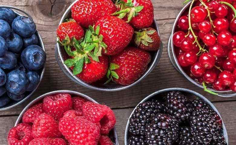 makanan sehat dan bergizi, makanan yang sehat