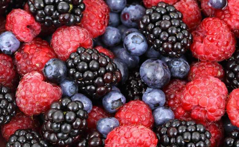 12 Jenis Buah Berry & Manfaat Kesehatannya - Tokopedia Blog