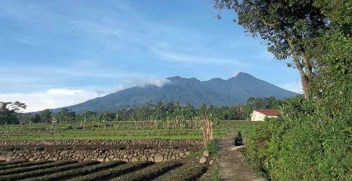 28 Tempat Wisata Bogor Wisata Alam Wisata Keluarga 2020