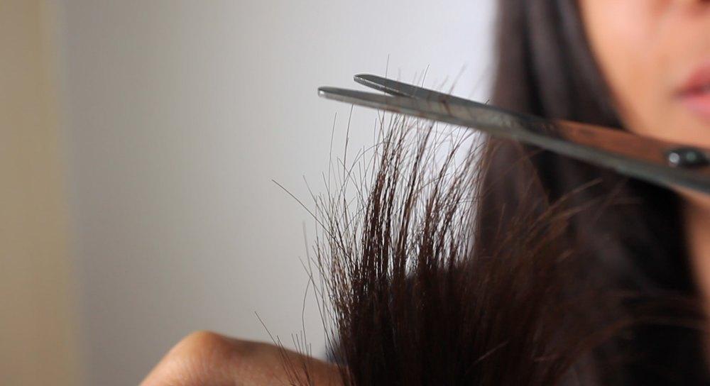 kegunaan minyak zaitun mencegah rambut rusak