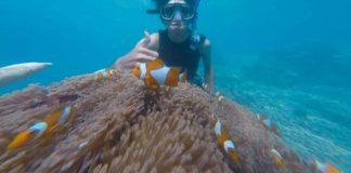 snorkeling bali