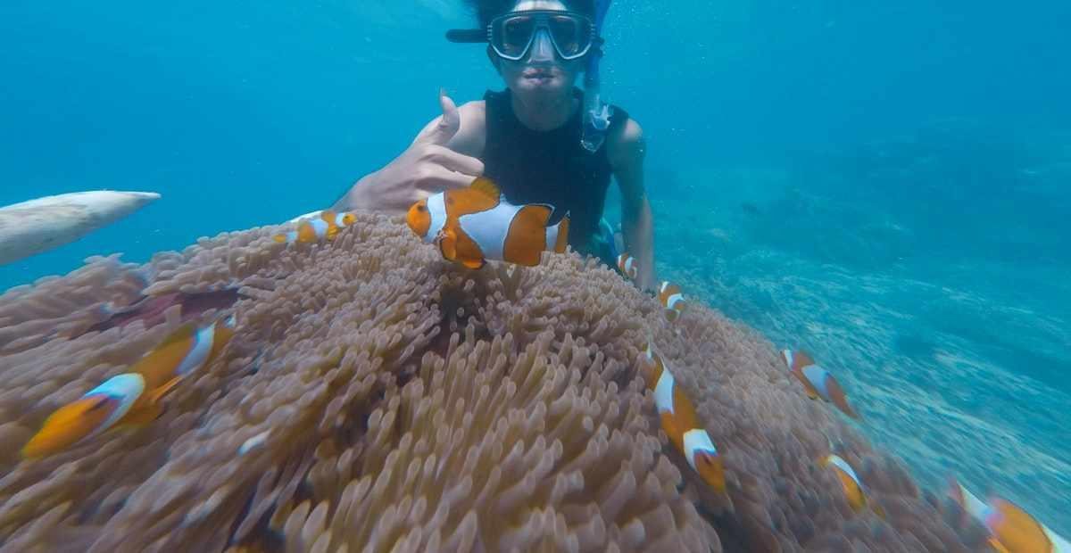 10 Lokasi Snorkeling Terbaik di Bali