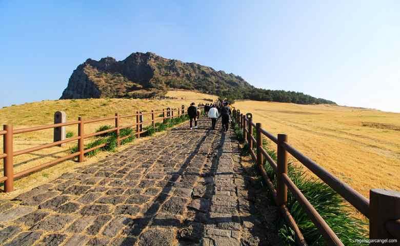 tempat wisata alam di korea selatan  Seongsan Sunrise Peak