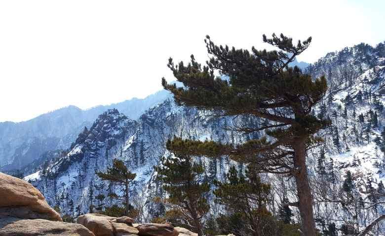 tempat wisata alam di korea selatan  Seoraksan National Park