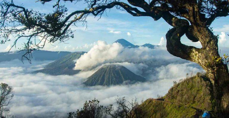 Wisata di Sekitar Gunung Bromo Terpopuler Tahun 2020