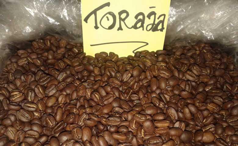 macam macam kopi terbaik: kopi toraja