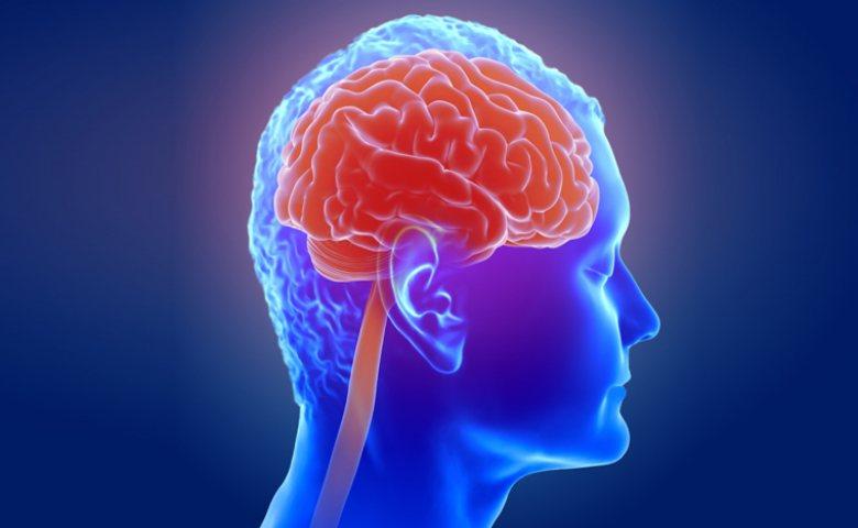 manfaat brokoli meningkatkan pusing otak