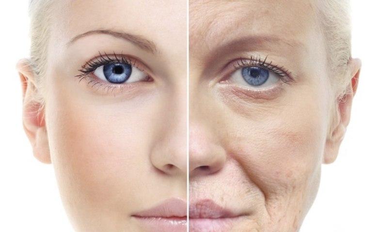 manfaat uap wajah Merangsang Produksi Kolagen dan Elastin