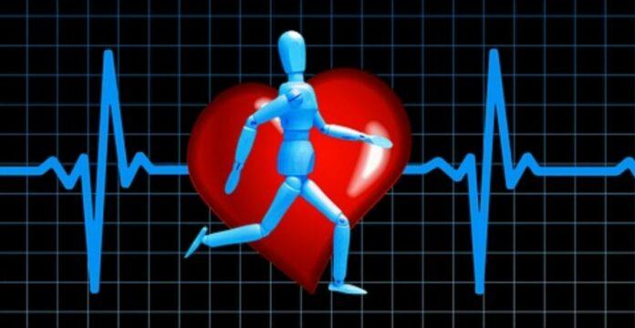 detak jantung normal