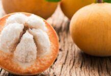 buah kecapi