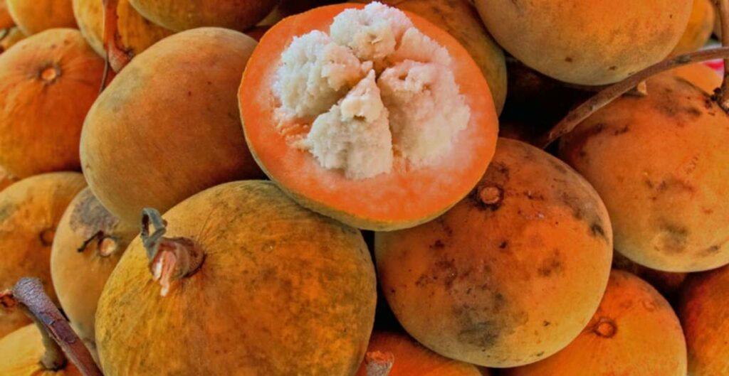 manfaat buah kecapi