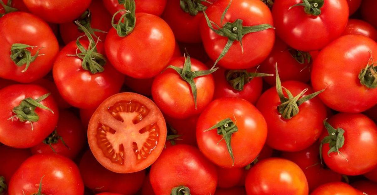 11 Manfaat Tomat Buah Setia Dengan Khasiat Tak Terkira