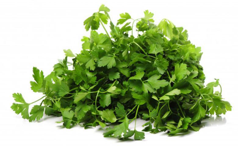 kandungan daun parsley, kandungan daun peterseli