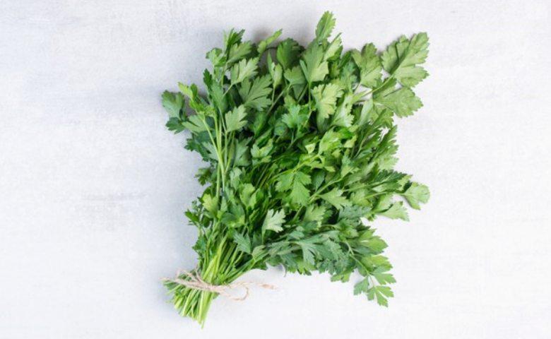 manfaat parsley, khasiat peterseli