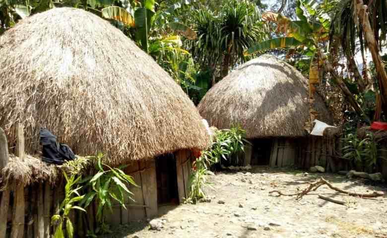 rumah adat papua