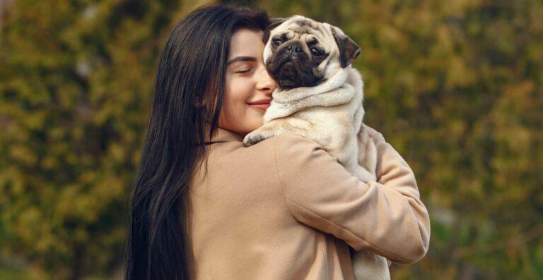 7 Cara Tepat Merawat Hewan Peliharaan: Nyaman dan Aman!