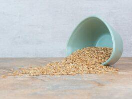 barley, manfaat barley
