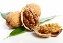 walnut, kacang kenari