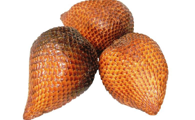 kalori buah salak, kandungan buah salak
